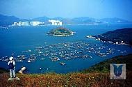 Đảo Nam Nha - Lamma Island