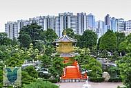 Lý Do nên Du Lịch Hồng Kông - Những điều hấp dẫn