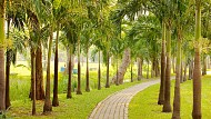 Tận hưởng không gian thư giãn tại Công viên Hồng Kông