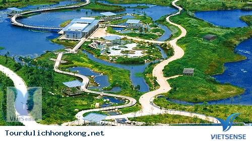 Công viên sinh thái Hong Kong Wetland
