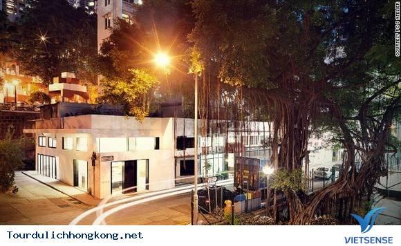 ĐIỀU GÌ LÀM NÊN MỘT HONGKONG ĐẶC BIỆT NHƯ THẾ,dieu gi lam nen mot hongkong dac biet nhu the
