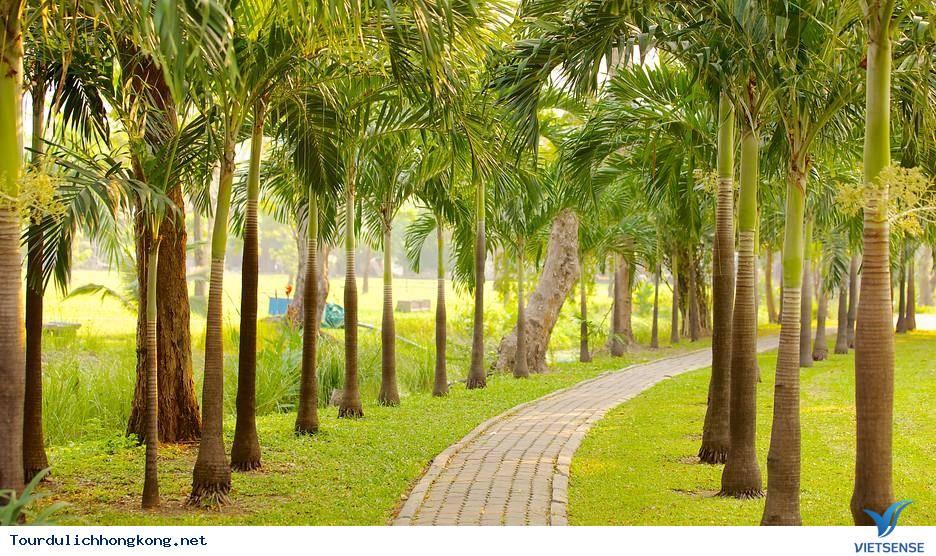 Tận hưởng không gian thư giãn tại Công viên Hồng Kông,tan huong khong gian thu gian tai cong vien hong kong